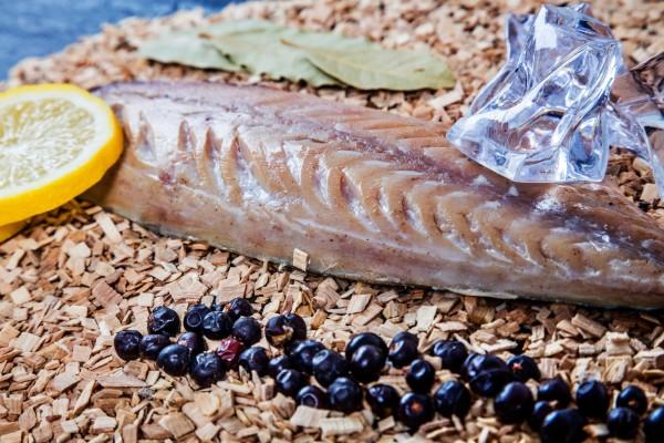 Beispielbild Fischmaster
